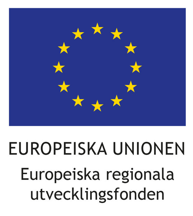 Europeiska unionen Europeiska regionala utvecklingsfonden