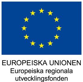 Europeiska unionen, europeiska regionala utvecklingsfonden, ESF, Livslångt lärande, Det livslånga lärandet, Linköping Science Park, Skill